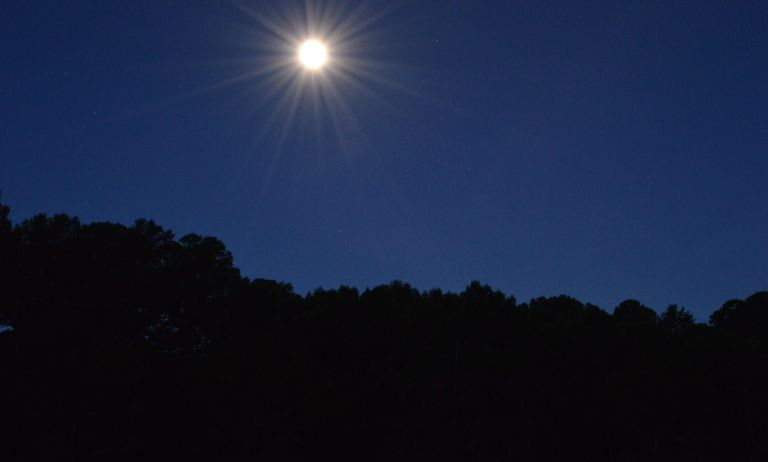 Caddo Lake Moon beams