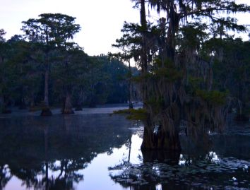 Caddo Lake Sunrise