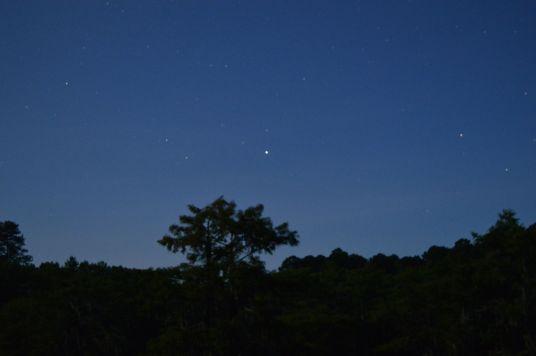 Caddo Lake Texas sky
