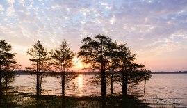 sunrise Sam Rayburn