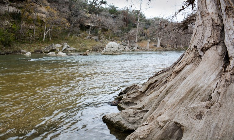 Guadalupe river state park (4)