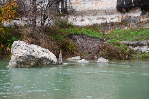 Guadalupe river state park (5)