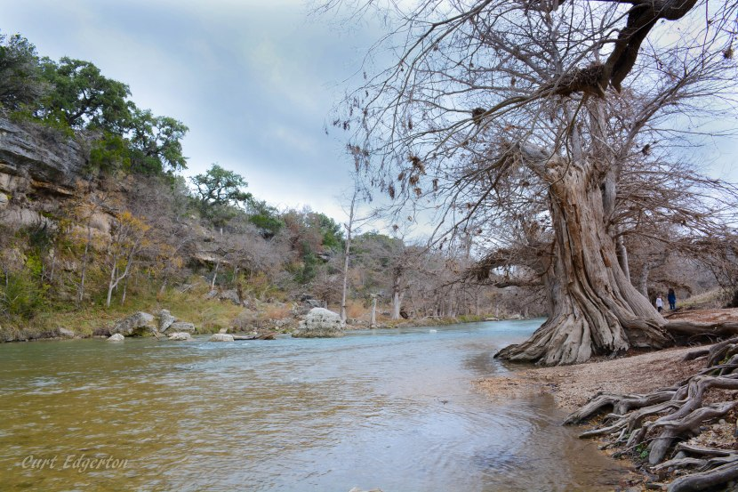 Guadalupe River State Park: why camp