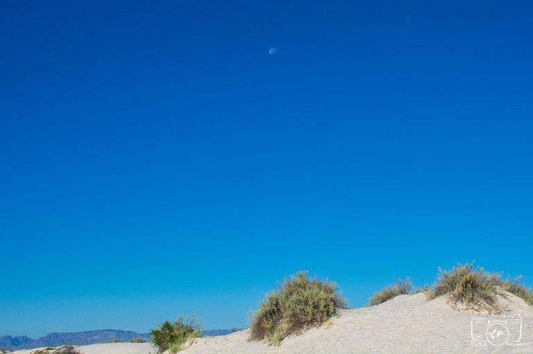white sands (4)
