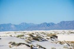 white sands (5)